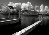 Nikon Coolpix 5400 - self converted for IR using Lee 87c internal filter